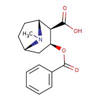 Novachem Benzoylecgonine B-004-1ML 519-09-5
