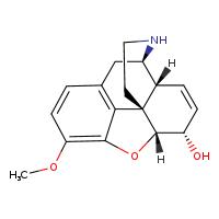 Novachem Norcodeine N-005-1ML 467-15-2